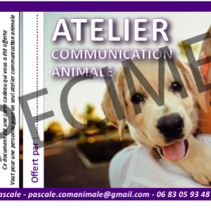 communication animale carte cadeau