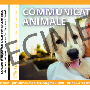 CARTE CADEAU Communication Animale