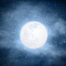 lune blanche com animale