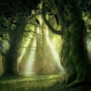 forêt magique com animale